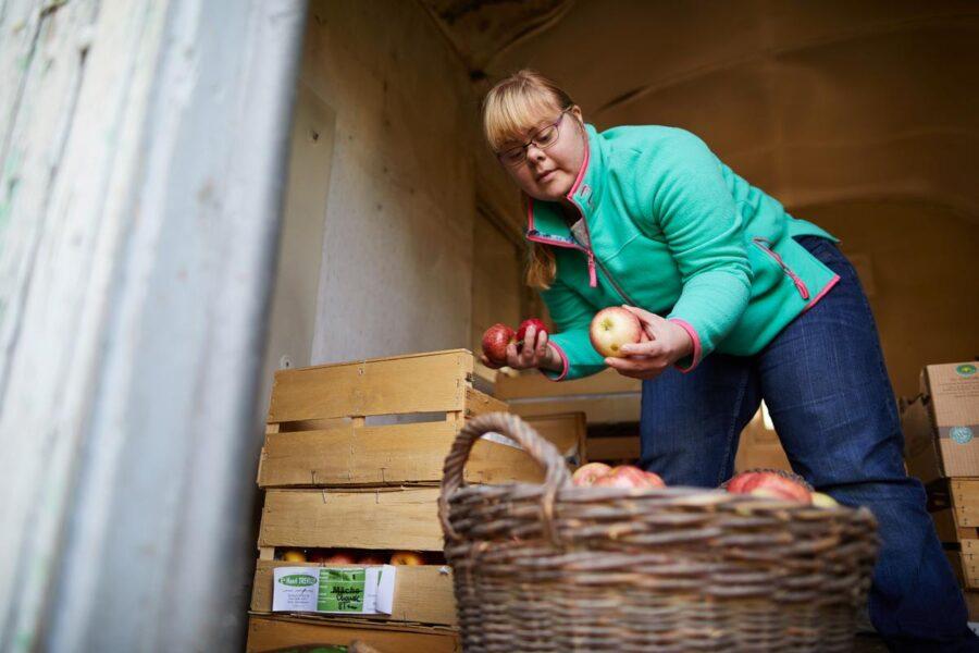 Arbeitsplätze mit Biss: Lebenshilfe pachtet Obstplantage in Leese